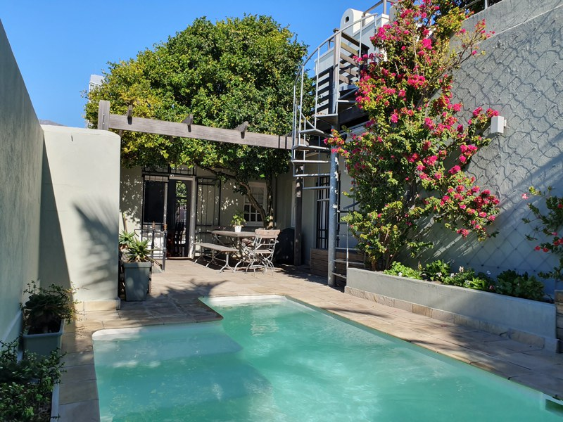 40 Napier Street - pool & terrace
